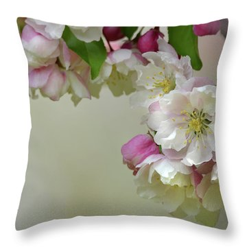 Throw Pillow featuring the photograph Apple Blossoms  by Ann Bridges