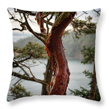 Arbutus Tree Throw Pillow