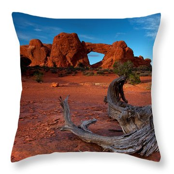 Throw Pillow featuring the photograph Arches by Evgeny Vasenev