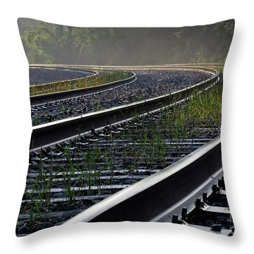 Throw Pillow featuring the photograph Around The Bend by Douglas Stucky