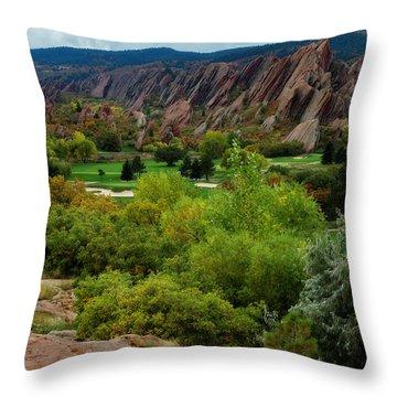 Throw Pillow featuring the photograph Arrowhead by Kristal Kraft