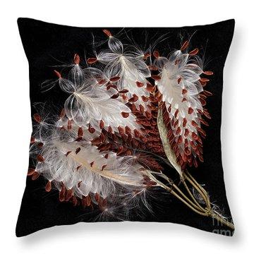 Asclepias Currasavica--seed Pod Throw Pillow