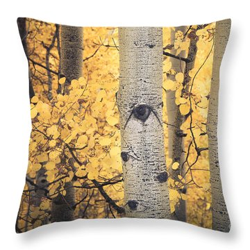 Aspen Boles Throw Pillow by The Forests Edge Photography - Diane Sandoval