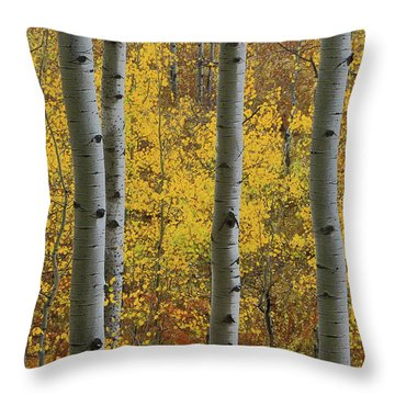 Aspen In Autumn At Mcclure Pass Throw Pillow by Jetson Nguyen