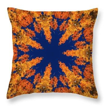 Throw Pillow featuring the photograph Aspen Kaleidoscope  by Bill Barber