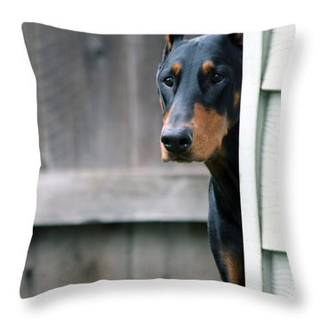 Attentive Throw Pillow by Rita Kay Adams