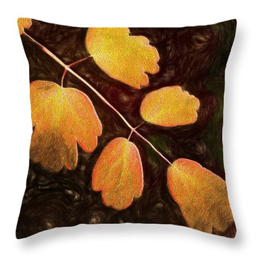 Throw Pillow featuring the photograph Autumn Breeze by Paul Wear