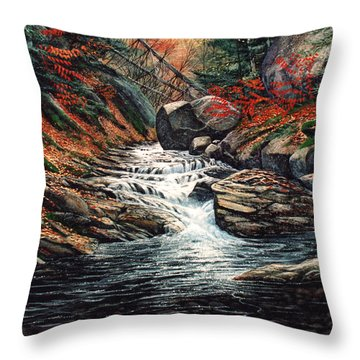 Autumn Brook Throw Pillow