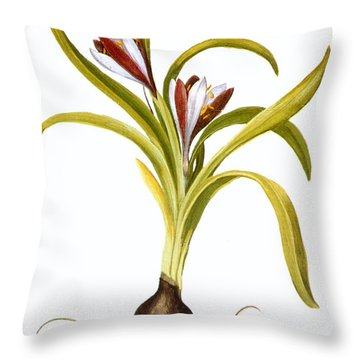 Autumn Crocus Throw Pillow by Granger