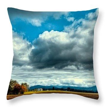Autumn In Mount Vernon Throw Pillow