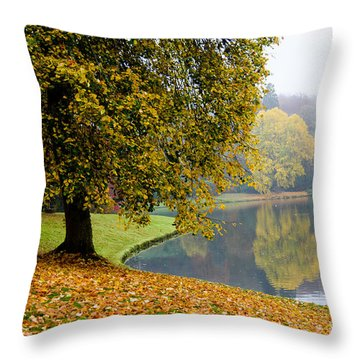 Autumn In The Park Throw Pillow
