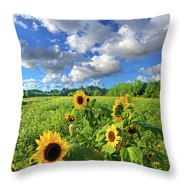 Autumn Is Near Throw Pillow