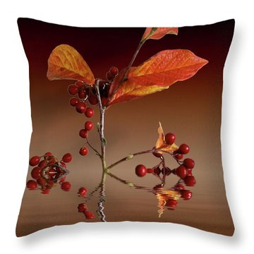 Throw Pillow featuring the photograph Autumn Leafs And Red Berries by David French
