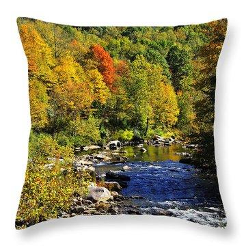 Autumn On The Cherry River Throw Pillow