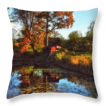 Autumn Palette Throw Pillow by Joann Vitali