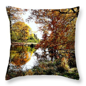 Autumn Reflections Throw Pillow by Susan Savad