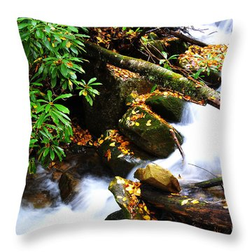 Autumn Serenity Throw Pillow by Thomas R Fletcher