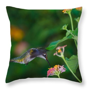 Awesome Beauty Throw Pillow by Donna Brown