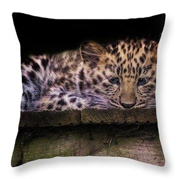 Baby Amur Leopard Throw Pillow