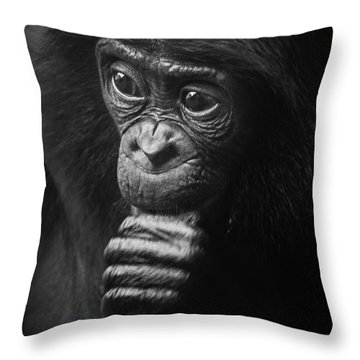 Throw Pillow featuring the photograph Baby Bonobo Portrait by Helga Koehrer-Wagner