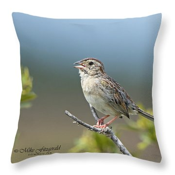Bachman Sparrow Throw Pillow