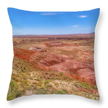 Badlands South Dakota Throw Pillow