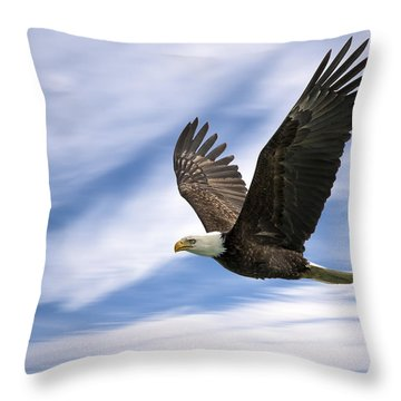 Bald Eagle - 365-12 Throw Pillow by Inge Riis McDonald