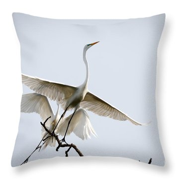 Ballet In The Sky Throw Pillow