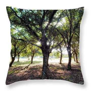 Throw Pillow featuring the photograph Band Of Brothers by Beto Machado