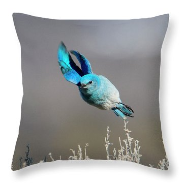 Throw Pillow featuring the photograph Bank Right by Mike Dawson