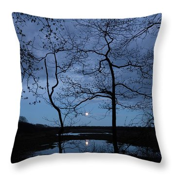 Throw Pillow featuring the photograph Barn Island Moonrise by Kirkodd Photography Of New England