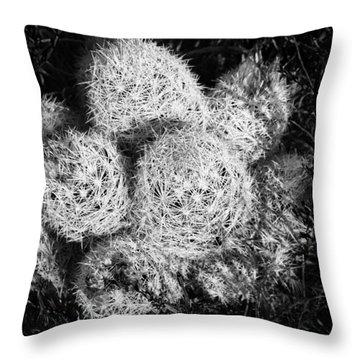 Barrel Cactus In Bloom. Throw Pillow