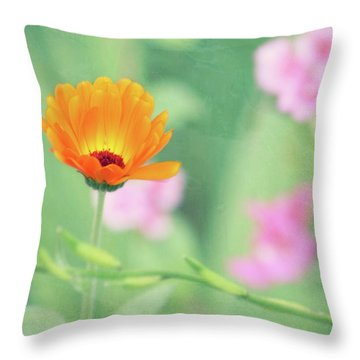 Throw Pillow featuring the photograph Be Beautiful by Robin Dickinson