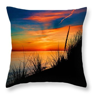Grassn And Sky Throw Pillow by Randall  Cogle