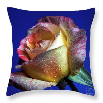 Beamish Throw Pillow