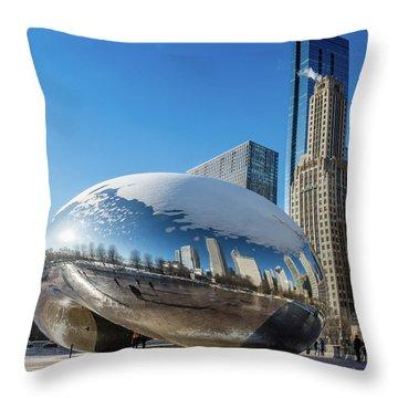 Bean Reflections Throw Pillow