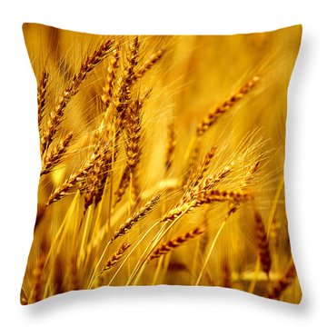 Bearded Barley Throw Pillow