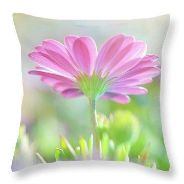 Beautiful Daisy Flower Throw Pillow