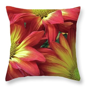 Throw Pillow featuring the photograph Beautiful Trio by Allen Beatty