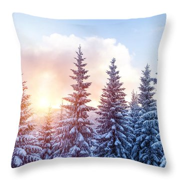 Beautiful Winter Forest Throw Pillow
