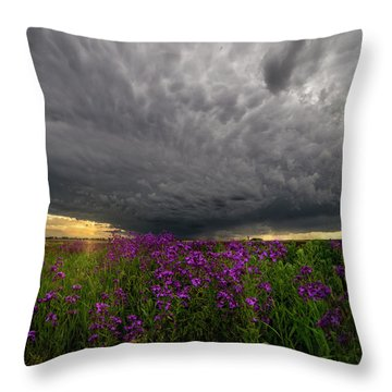 Throw Pillow featuring the photograph Beauty And The Beast by Aaron J Groen