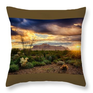 Beauty In The Desert Throw Pillow