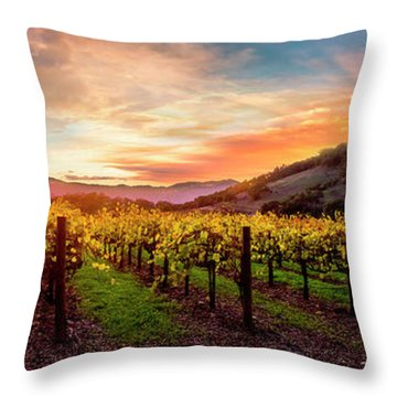 Morning Sun Over The Vineyard Throw Pillow