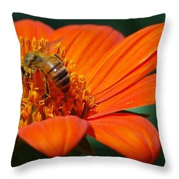 Bee-utiful Throw Pillow by Debbie Karnes