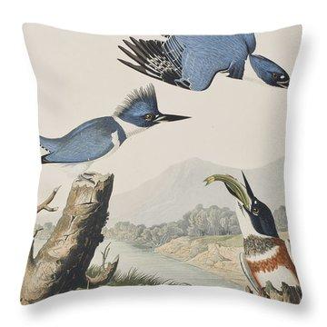 Belted Kingfisher Throw Pillow by John James Audubon