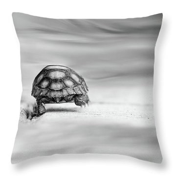 Big Big World Throw Pillow