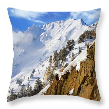 Big Cotonwood Canyon Throw Pillow