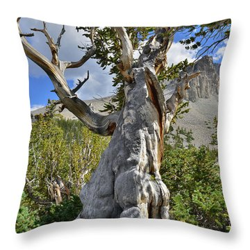 Throw Pillow featuring the photograph Big Fella by Ray Mathis