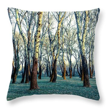 Birch Tree Woodland Throw Pillow by Lana Enderle