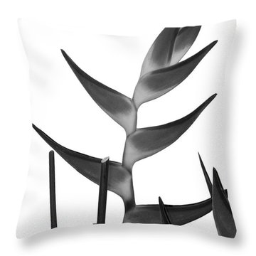 Bird Of Paradise Plant Throw Pillow